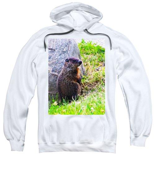 The Groundhog Sentinel Sweatshirt