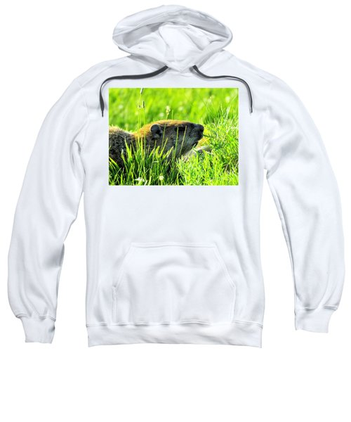 The Sound Of Silence Sweatshirt