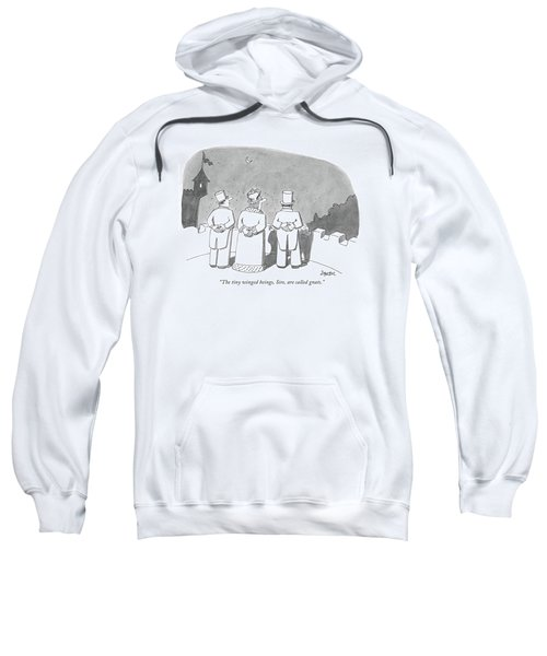 The Tiny Winged Beings Sweatshirt