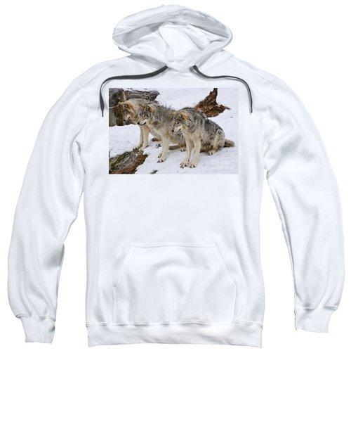 Three Kings Sweatshirt