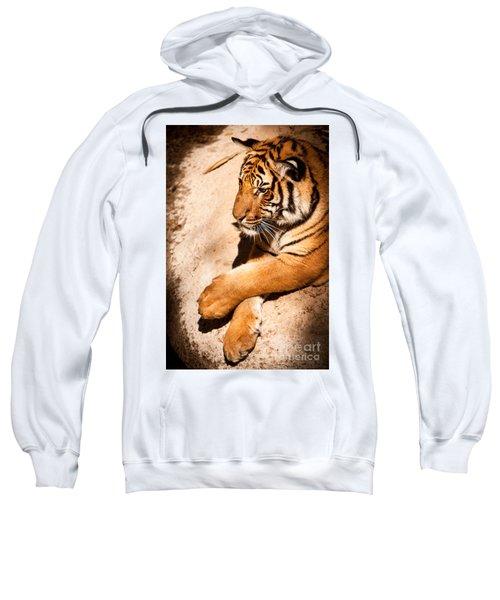 Tiger Resting Sweatshirt