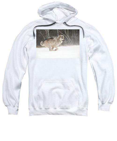 Timber Wolf, Minnesota Sweatshirt