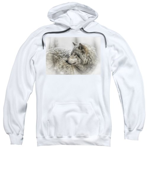 Timber Wolf Pictures 280 Sweatshirt