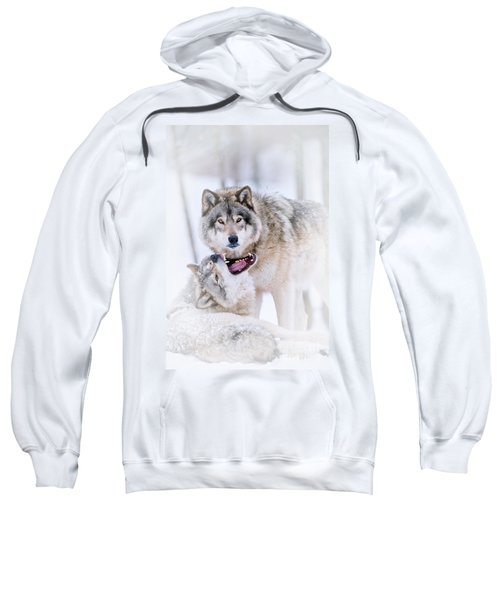 Timber Wolf Pictures 56 Sweatshirt