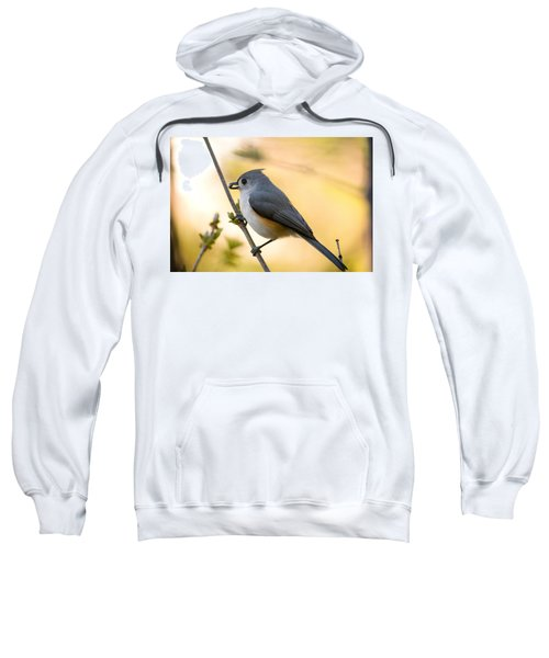 Titmouse In Gold Sweatshirt