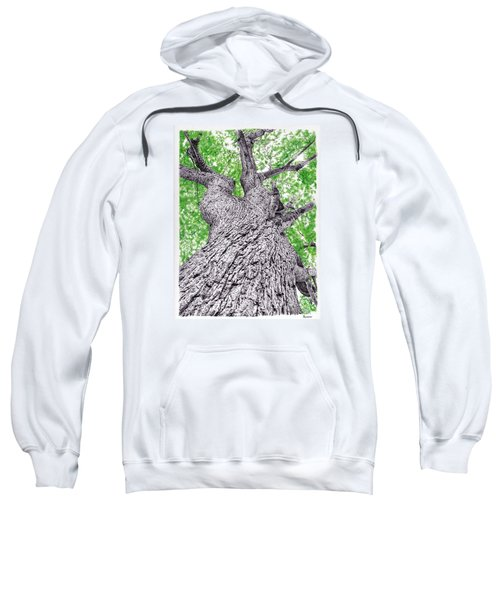 Tree Pen Drawing 4 Sweatshirt
