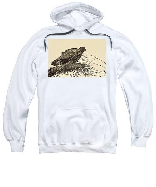 Turkey Vulture V2 Sweatshirt by Douglas Barnard