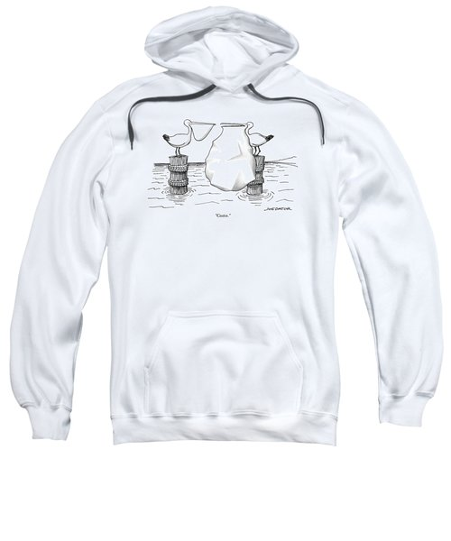 Two Pelicans Converse As The Other's Beak Sweatshirt