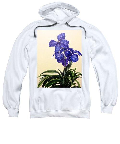 Vanda Sausai Blue Orchid Sweatshirt