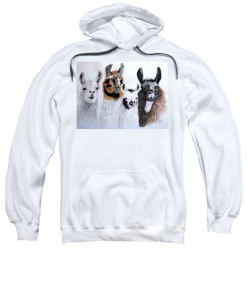 What Is Up Sweatshirt by Joette Snyder