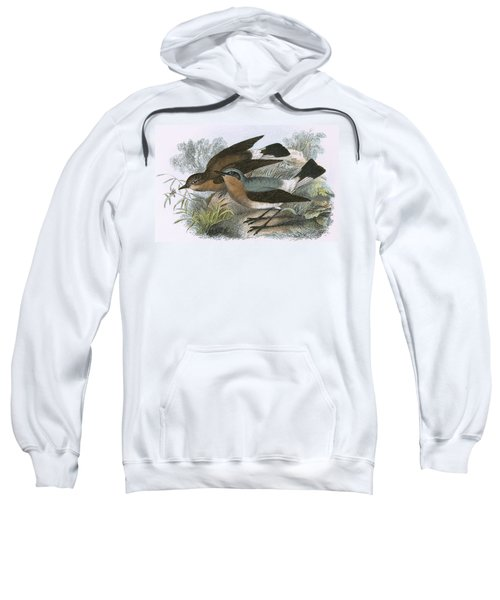 Wheatear Sweatshirt by English School