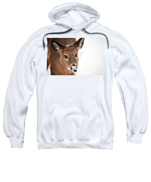 White On The Nose Sweatshirt