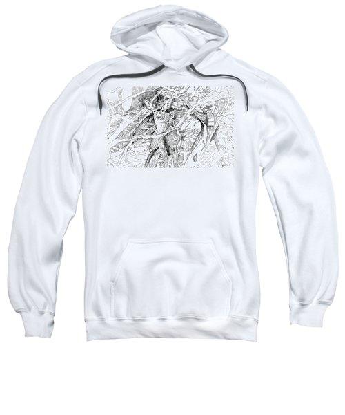 White-tail Encounter Sweatshirt