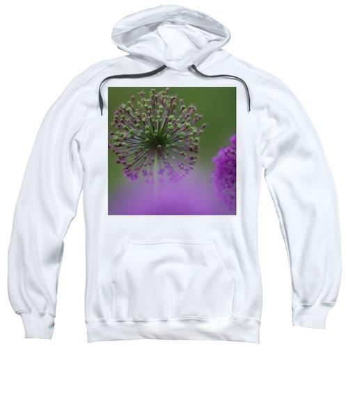 Wild Onion Sweatshirt
