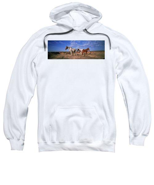 Wild Ponies Nm Usa Sweatshirt
