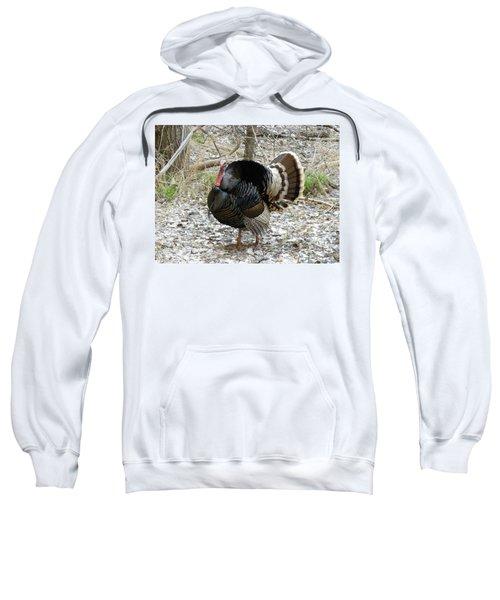 Wild Turkey Mnt Zion Ut Sweatshirt