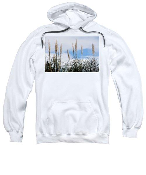 Willow Sweatshirt