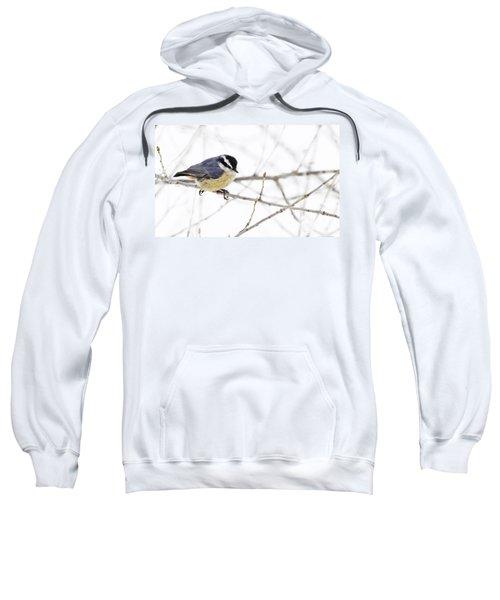 Winter Day Sweatshirt