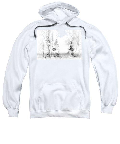 Winter Drawing Sweatshirt