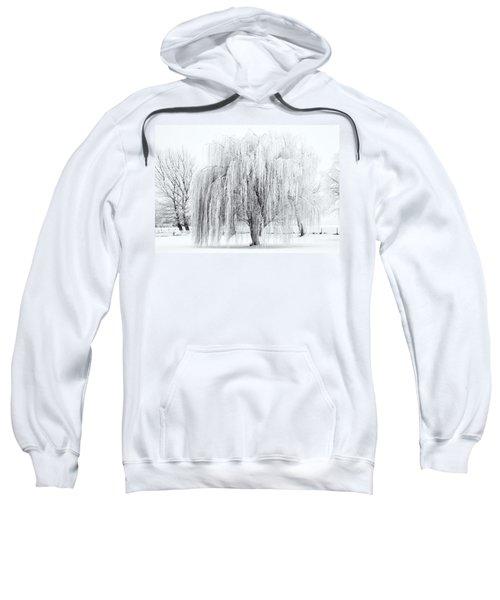 Winter Willow Sweatshirt
