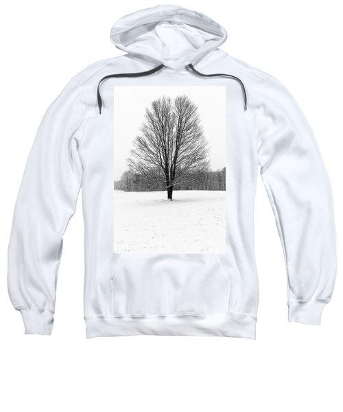 Winterclove Sweatshirt