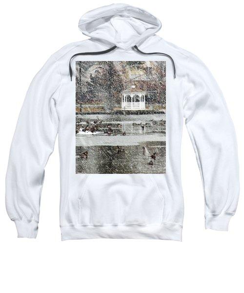 Wintering Geese On Silver Lake Sweatshirt