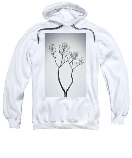 Wishbone Tree Sweatshirt