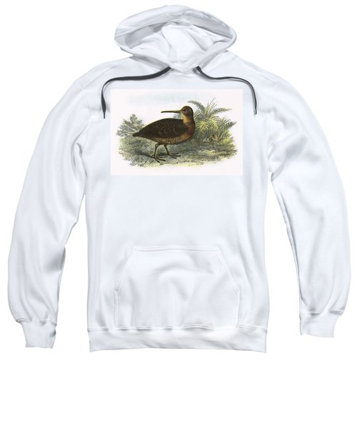 Woodcock Sweatshirt by English School