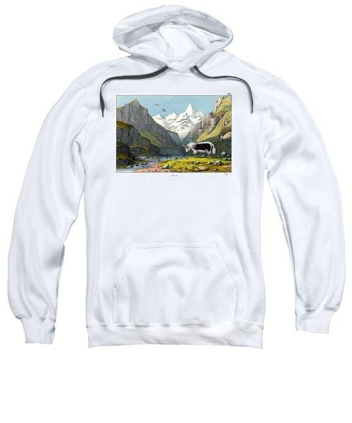 Yak Sweatshirt by Splendid Art Prints