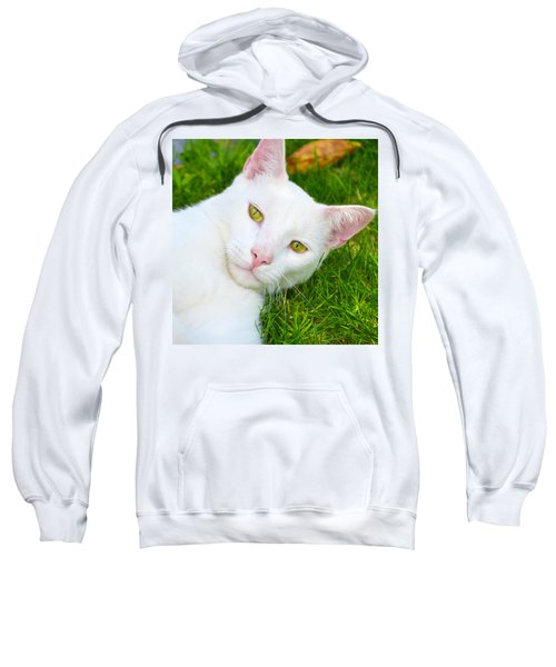 Yellow Eyes Sweatshirt