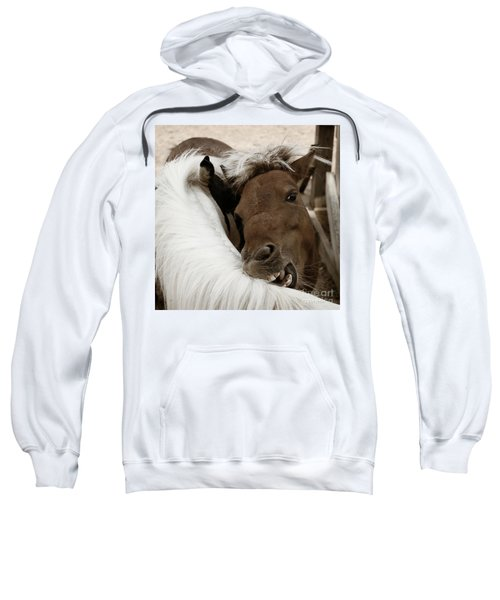You Scratch Mine Sweatshirt