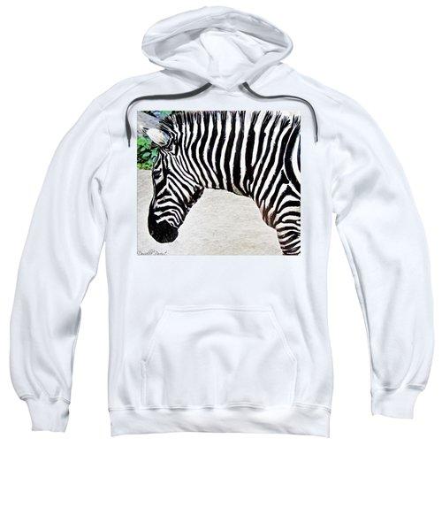 Zebra Alcohol Inks  Sweatshirt