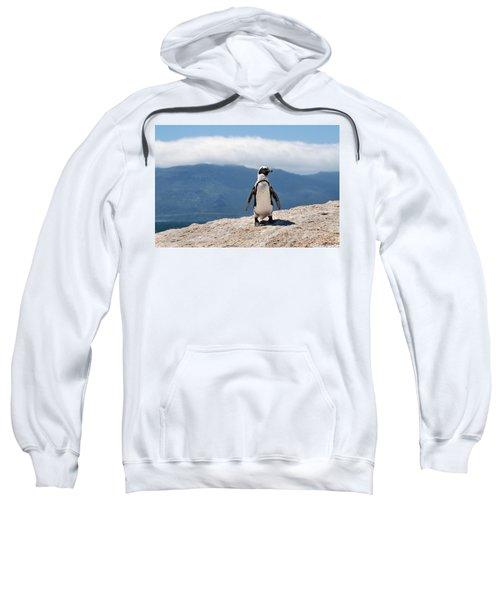 African Penguin Sweatshirt