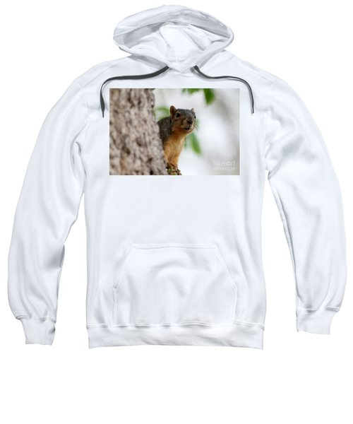 Squirrel Sweatshirt