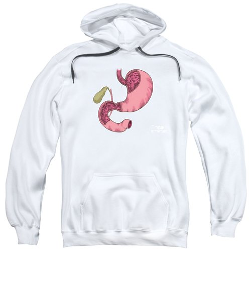 Illustration Of Stomach And Duodenum Sweatshirt
