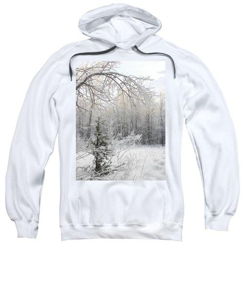 And More Snow Sweatshirt