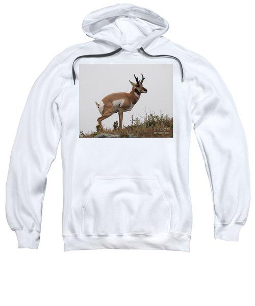Antelope Critiques Photography Sweatshirt