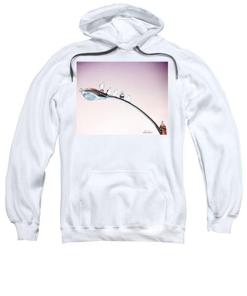 Birds On A Streetlight Sweatshirt