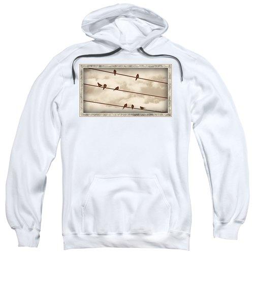 Birds On Wires Sweatshirt