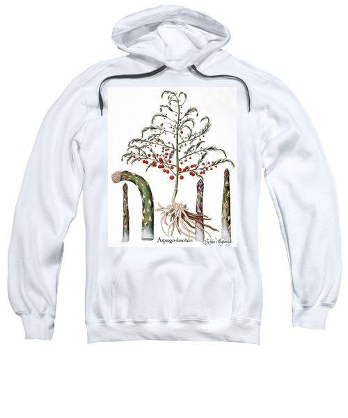 Botany: Asparagus, 1613 Sweatshirt