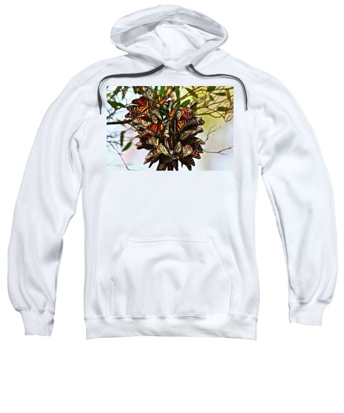 Butterfly Bouquet Sweatshirt