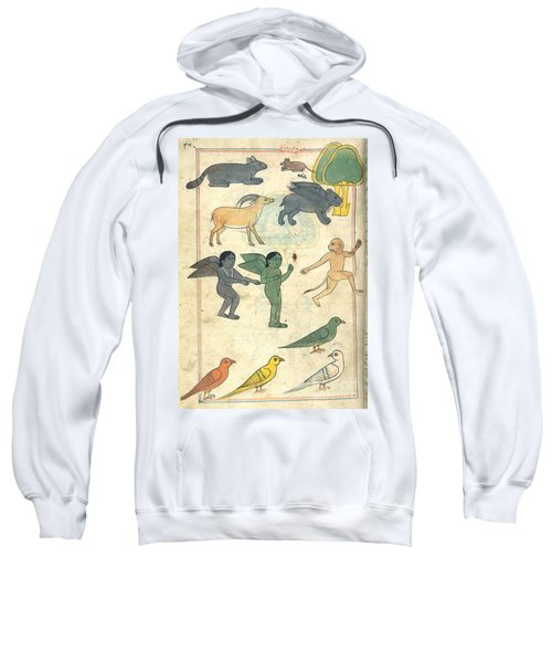 Creatures From The Island Of Zanj, 17th Sweatshirt