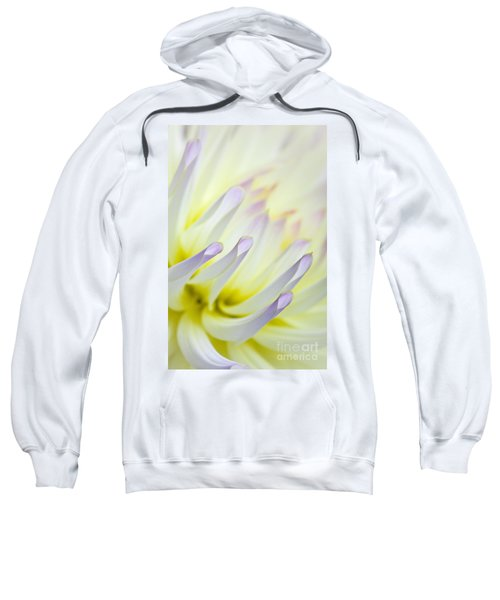 Dahlia Flower 09 Sweatshirt