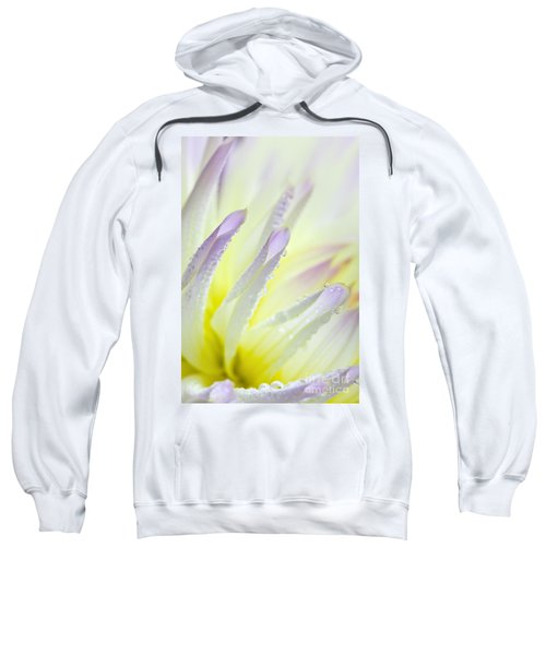 Dahlia Flower 11 Sweatshirt