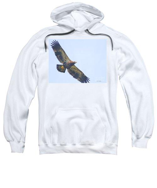Eaglet 2012 Sweatshirt