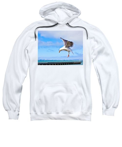 Final Approach - San Francisco Sweatshirt
