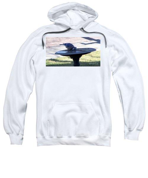 Frustration Sweatshirt
