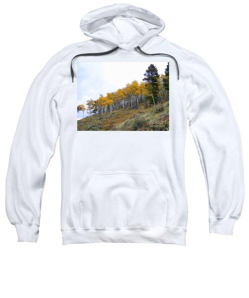 Golden Stand Sweatshirt