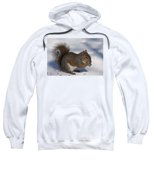 Gray Squirrel On Snow Sweatshirt