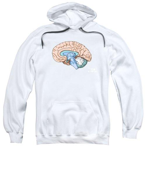 Illustration Of Human Brain Sweatshirt